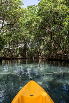 Amanera, Dominican Republic - Kayaking T