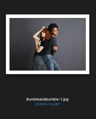 bumbleandbumble-1.png