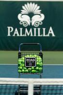 Tennis Balls and Palmilla Logo.jpg