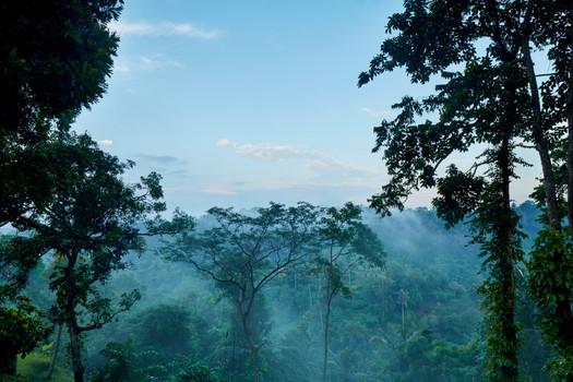 Amandari, Indonesia - Valley Suite View_