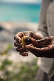 Amanyara, Turks & Caicos - Hike and Picn