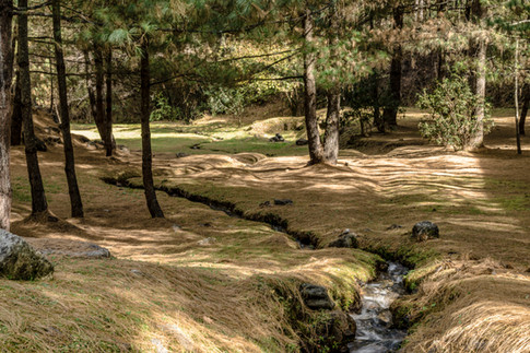 Amankora, Bhutan - Paro Lodge, Grounds_H