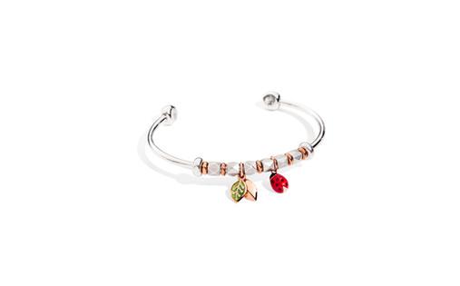 Cuff in silver, ladybug and leaf.jpg