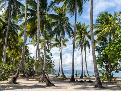 Amanera, Dominican Republic - Playa Gran