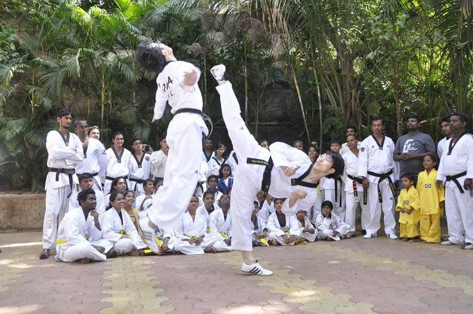amazing taekwondo kick