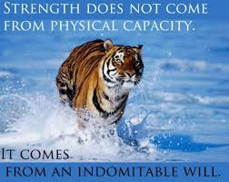martial arts inner tiger