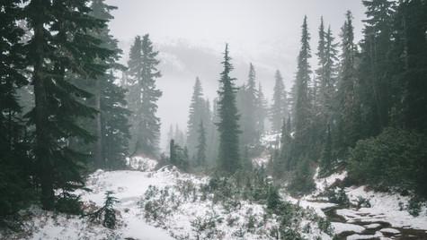 Mt_albert_edward_hiking_trail_winter_jk.