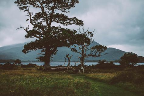 irland_roadtrip_landschaft_abseits_touri