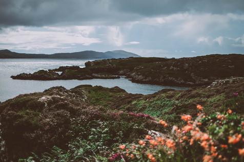 Irland_roadtrip_freiheit_natur.jpg