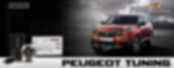 TUNING PAGE HEADER PEUGEOT.png