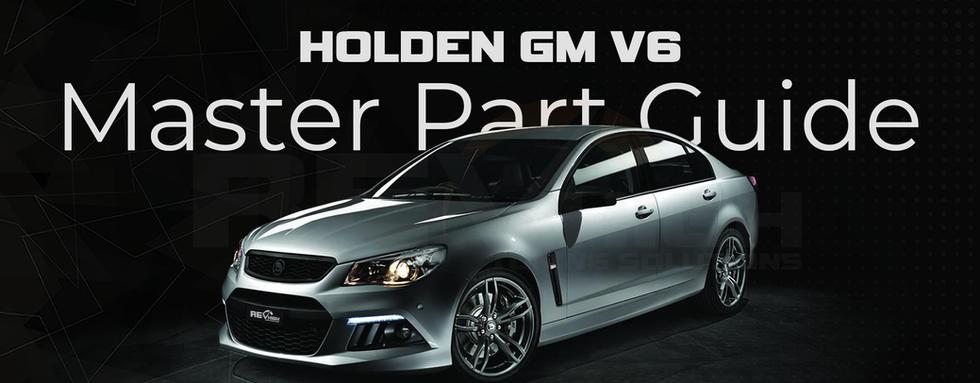 HOLDEN GM V6.png