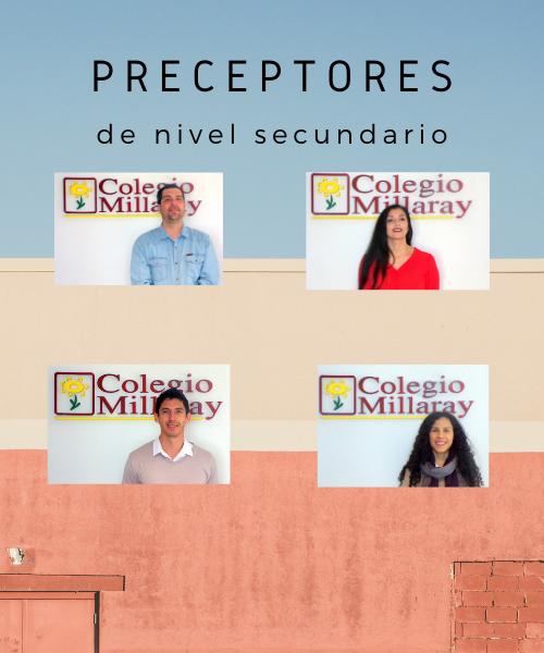 Preceptores de nivel secundario.png