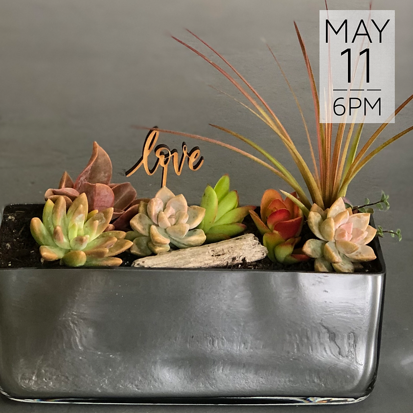 Mother's Day Succulent Bar || $40