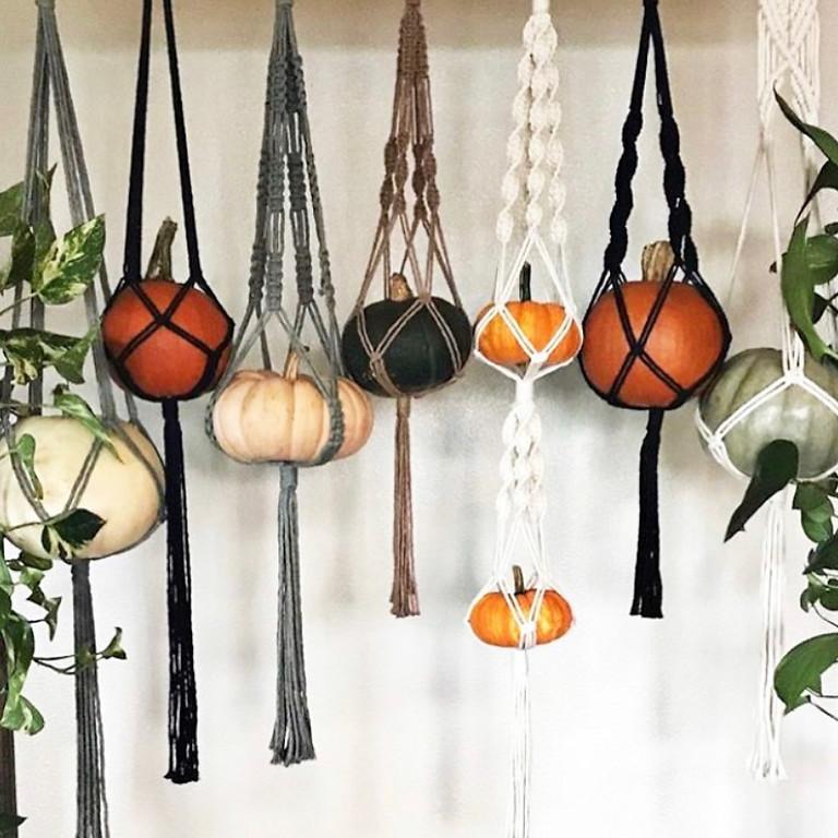 *OPEN TO PUBLIC* Macrame Plant/Pumpkin Hangers || $37.50