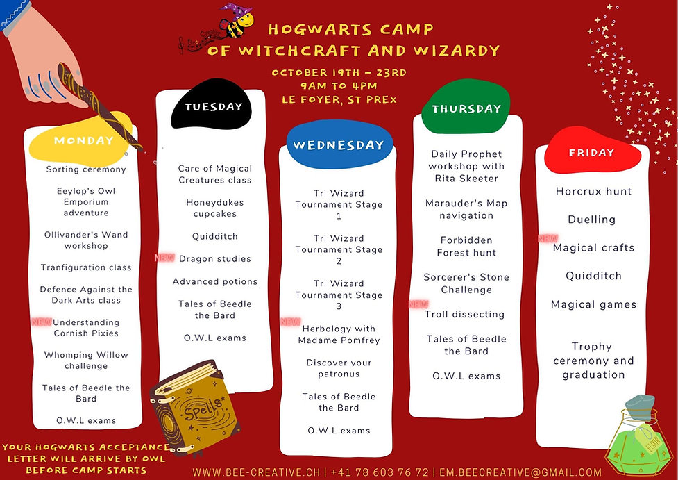 Hogwarts camp of witchcraft and wizardy.