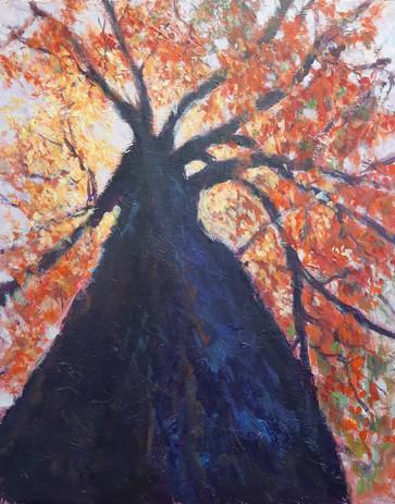 Covid 19 Tree