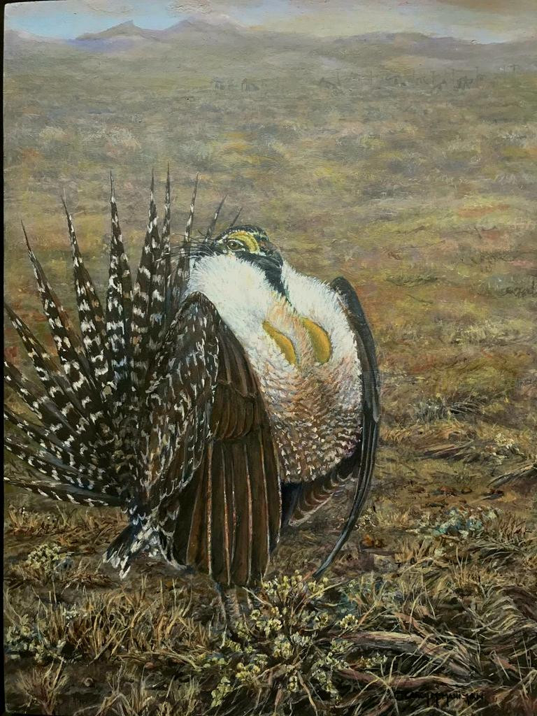 Encroachment - Sage Grouse