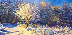 Burghardt Winter