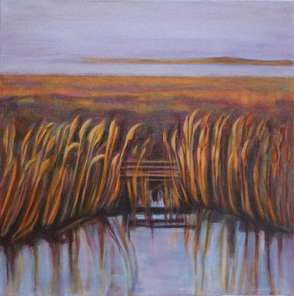 Ontario Autumn Grasslands #2