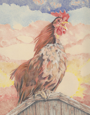 Alarm Cock