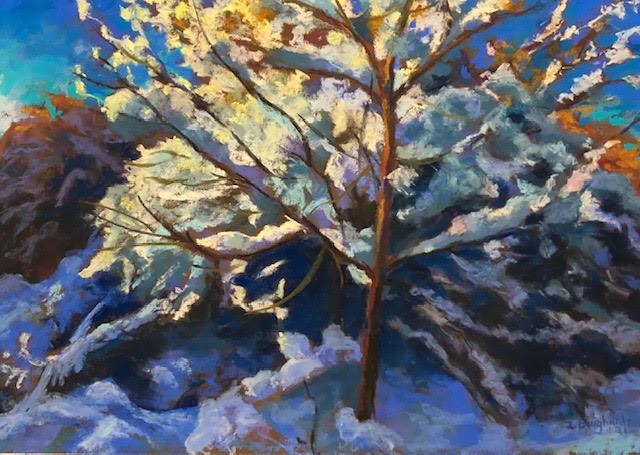 Sunlit Snowfall