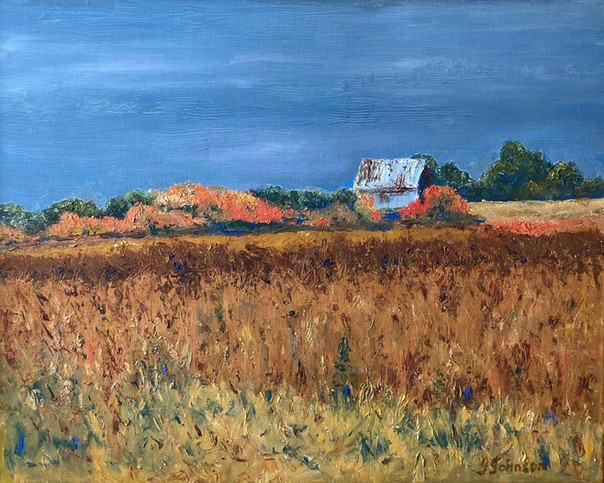 Elgin Fields