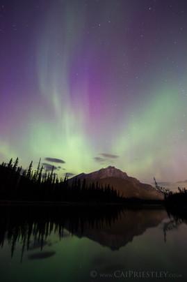 Cascade Aurora 3