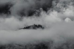 Morning Mist B&W