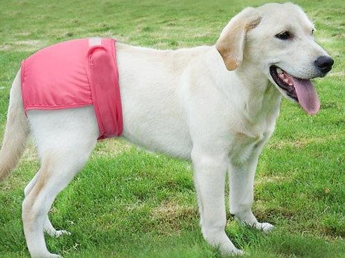 Dog sanitary protection