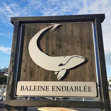 L'affiche Baleine Endiablée