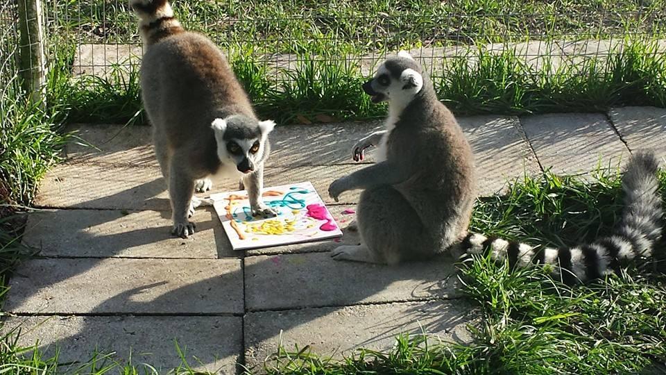 Lemurs painting