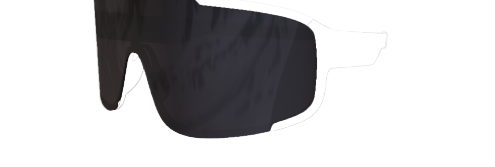 Smoke Polarised Lens - CONQUER