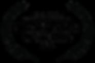 OFFICIALSELECTIONEurovisionPalermoFilmFe