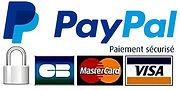 paiement paypal sécurisé.jpg