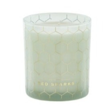 Ted Sparks Scented Candle Green Tea & Sage