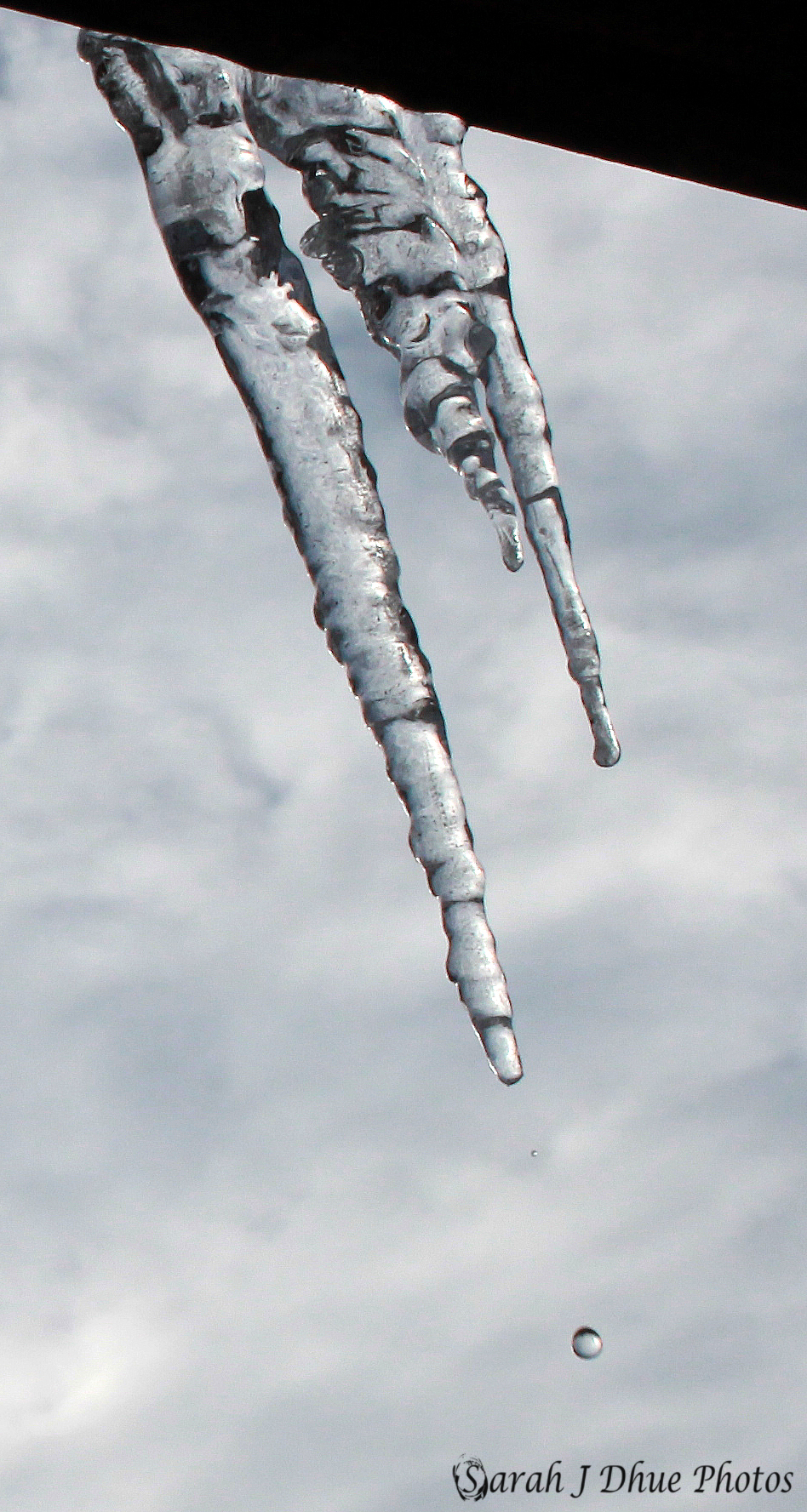 Icicle Drips