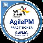 Agile_Project_Management_Practitioner__6