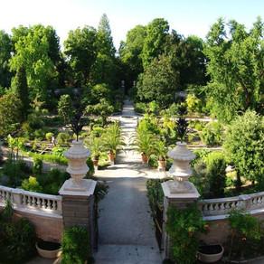 LOrto-Botanico-di-Padova.jpg