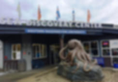 SEA Discovery Center