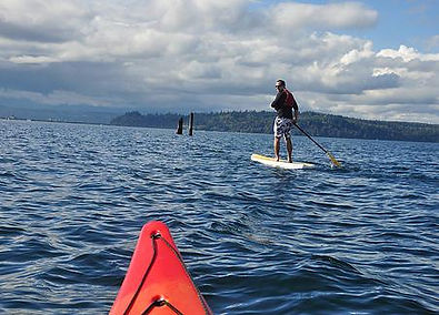 Paddleboarding On Liberty Bay