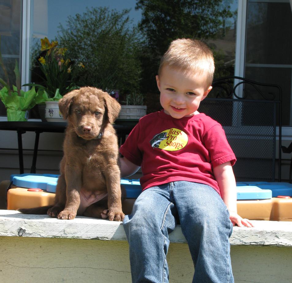 Stanley & Maddox 2012