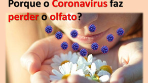 Quais os motivos da COVID-19 causarem a perda do olfato?