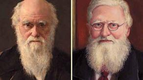 Parabéns Darwin & Wallace: 161 anos da comprovação da Teoria da Evolução!