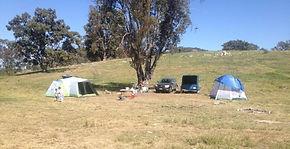 camp in mudgee, mudgee campsites, camping, mudgee, caravan park, campsite, bush camping, camping grounds mudgee, camp, campsites in mudgee, mudgee caravan park, old bara, bush, explore, wildlife, authentic camping, farm, farm camping, animals, mudgee camping, tent, caravan, free camp, campground, camp ground, campground, camp nsw