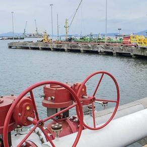 Entrevista para Portos e Navios, Camila Affonso, fala sobre o aumento do combustível