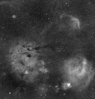 WD-1 and Sharpless