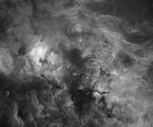 Central Cygnus
