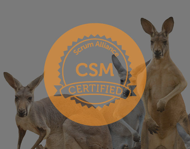 Certified Scrum Master™
