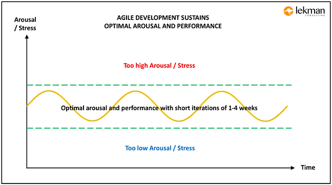 agile-development-supports-optimized-arousal-and-performance.png
