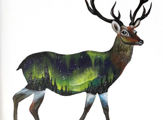 Leon Lollipop - Aurora Deer(60cm x 50cm,